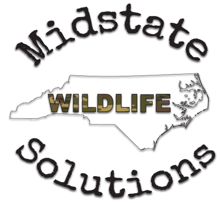 Midstate Wildlife Solutions